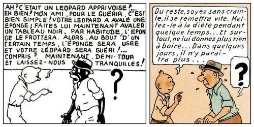 Tintin au congo 2
