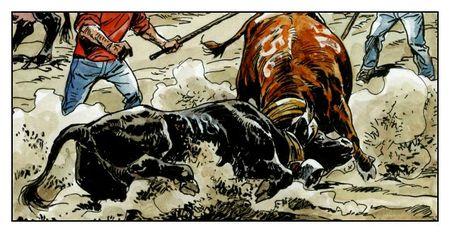 14b les vaches