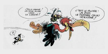 Franquin 04